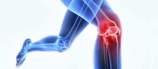 Ortopedia-1-590x260